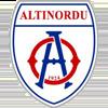 логотип команды Алтынорду