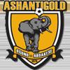 логотип команды Ашанти Голд
