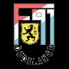 логотип команды Дюделанж