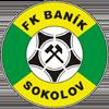 логотип команды Соколов