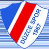 логотип команды Дюзчеспор