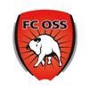 логотип команды Осс