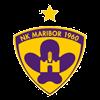 логотип команды Марибор