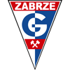 логотип команды Гурник